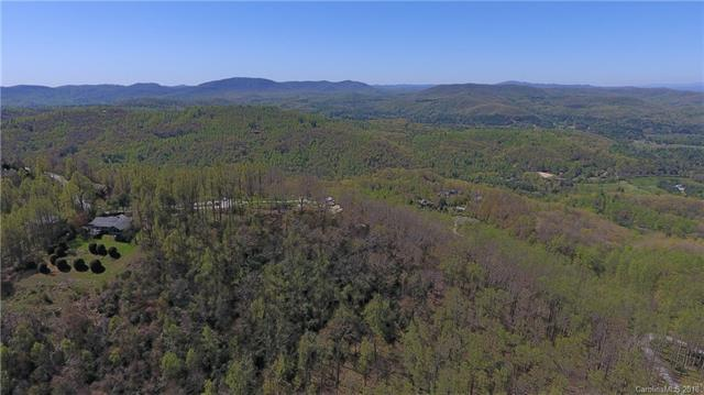 000 Winter Holly Lane #6, Hendersonville, NC 28739 (#3358527) :: Exit Mountain Realty