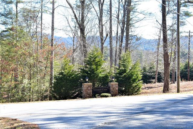 36 Crystal Cove Drive #5, Hendersonville, NC 28739 (#3358978) :: The Elite Group