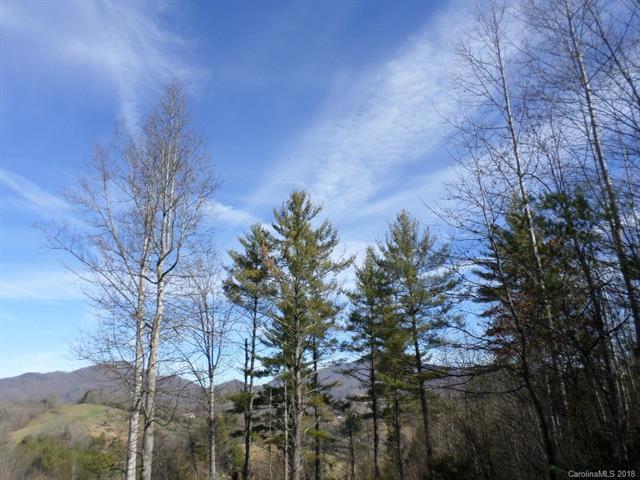 5 Treeline Trail #5, Waynesville, NC 28786 (#3360263) :: MartinGroup Properties