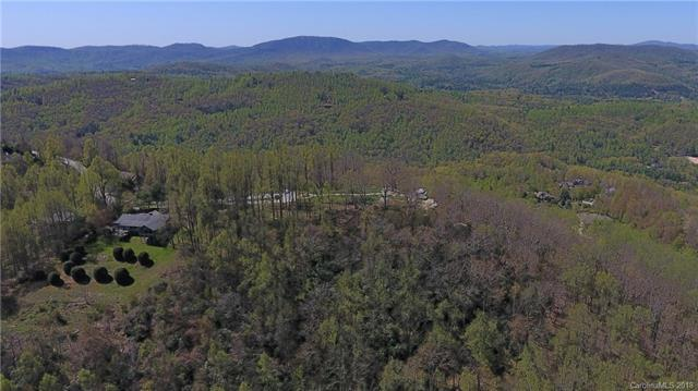 000 Winter Holly Lane #2, Hendersonville, NC 28739 (#3360798) :: Exit Mountain Realty