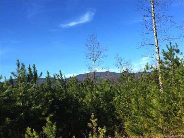 Lot #3 Mountain Way, Lake Lure, NC 28746 (#3361434) :: RE/MAX Metrolina