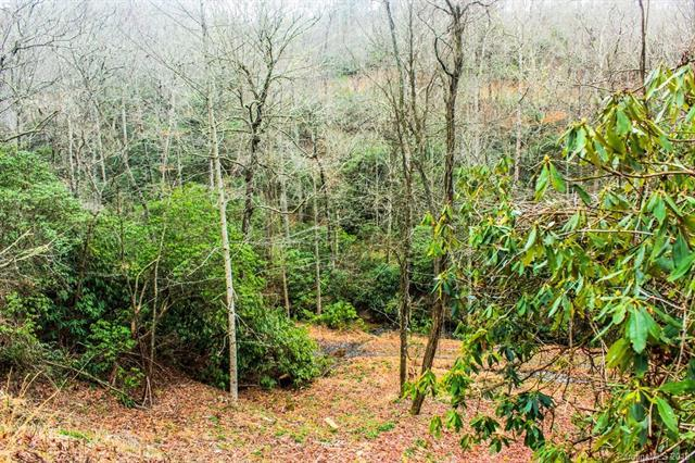 720 Black Gum Court #349, Hendersonville, NC 28739 (#3363100) :: Stephen Cooley Real Estate Group