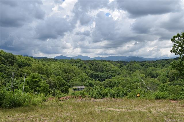 68 Sweet Fern Parkway #50, Asheville, NC 28804 (#3369423) :: Exit Mountain Realty