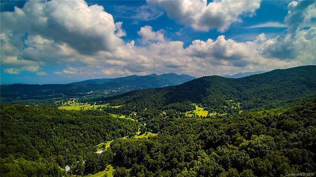 99999 Windago Road, Weaverville, NC 28787 (#3369931) :: Puffer Properties