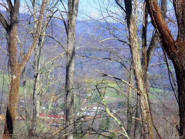 0 Mount Valley Road #0, Waynesville, NC 28785 (#3372385) :: LePage Johnson Realty Group, LLC