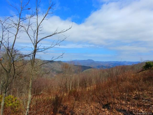 6A Adcock Mountain Road 6A, Waynesville, NC 28785 (#3372396) :: LePage Johnson Realty Group, LLC
