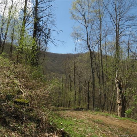 288 Forbidden Cove B-15, Waynesville, NC 28785 (#3378298) :: Zanthia Hastings Team