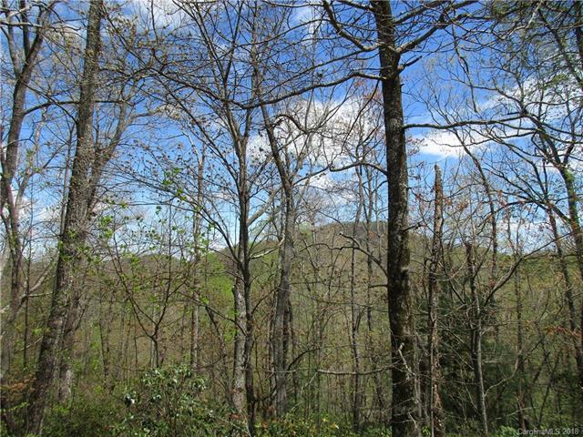 0 Spruce Lane #24, Zirconia, NC 28790 (#3383288) :: Puffer Properties
