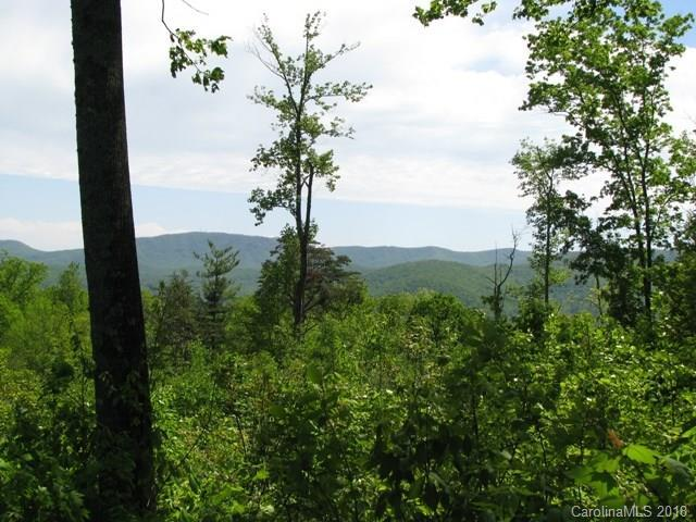 82 Mountain Elder Lane #82, Hendersonville, NC 28739 (#3386336) :: Puffer Properties