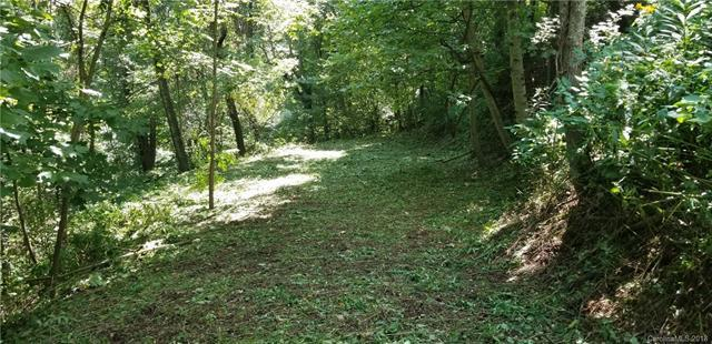 Lot 11 Red Maple Drive, Waynesville, NC 28785 (#3395251) :: LePage Johnson Realty Group, LLC