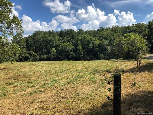 999 Regan Jackson Road #6, Mill Spring, NC 28756 (#3428113) :: Exit Mountain Realty