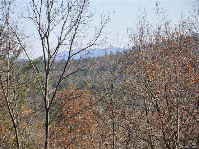LOT 38 + Pheasant Run, Hendersonville, NC 28739 (#3435565) :: Exit Mountain Realty
