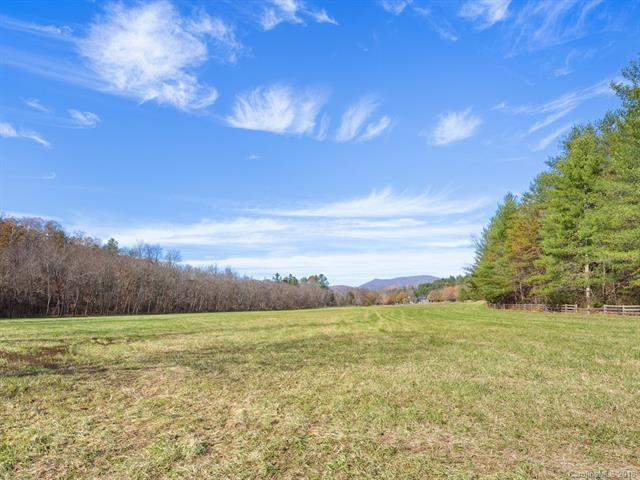 81 and 105 Gap Creek Road 2 & 3, Fletcher, NC 28732 (#3435641) :: Exit Mountain Realty