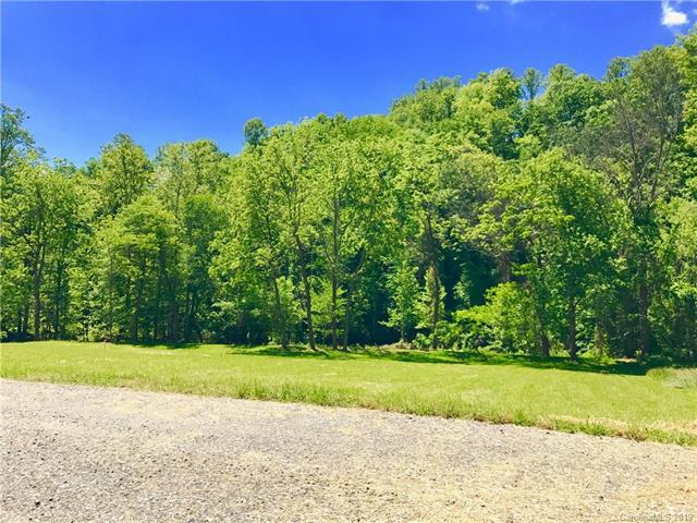 0000 Pigeon Ford Road 1-D, Canton, NC 28716 (#3438939) :: Roby Realty