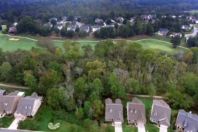 1353 Winged Foot Drive, Denver, NC 28037 (#3442618) :: Odell Realty
