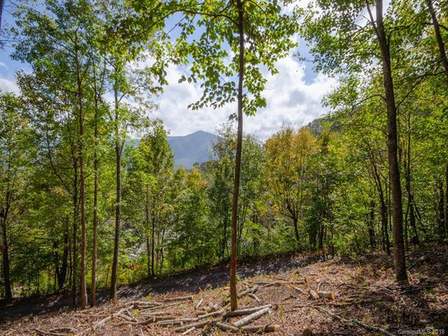 0 Off The High Road B, Waynesville, NC 28786 (#3443341) :: Cloninger Properties