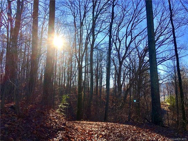 000 Bear Creek Lane, Saluda, NC 28773 (#3445463) :: Exit Mountain Realty