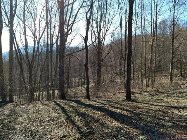 Lot 5 Sage Lane, Waynesville, NC 28785 (#3445754) :: Keller Williams Professionals