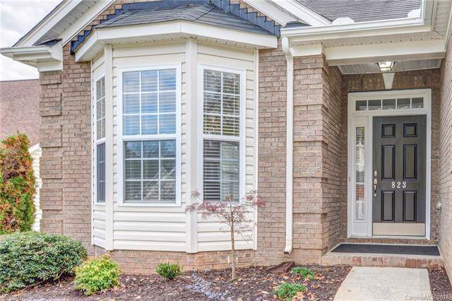 823 Platinum Drive, Fort Mill, SC 29708 (#3451085) :: Stephen Cooley Real Estate Group