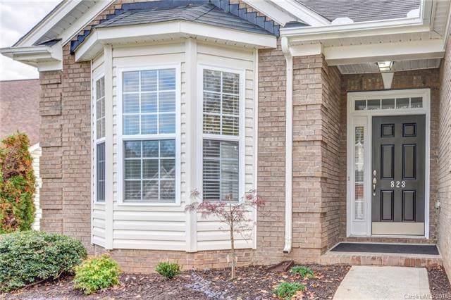 823 Platinum Drive, Fort Mill, SC 29708 (#3451085) :: MartinGroup Properties