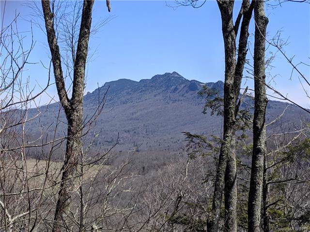 371 Linville Oaks Drive #10, Linville, NC 28646 (#3464652) :: Roby Realty