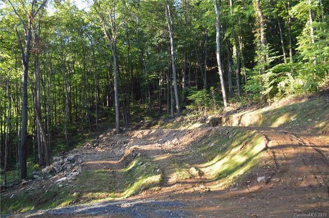 30 Hudson Valley Drive #10, Waynesville, NC 28786 (#3466009) :: LePage Johnson Realty Group, LLC