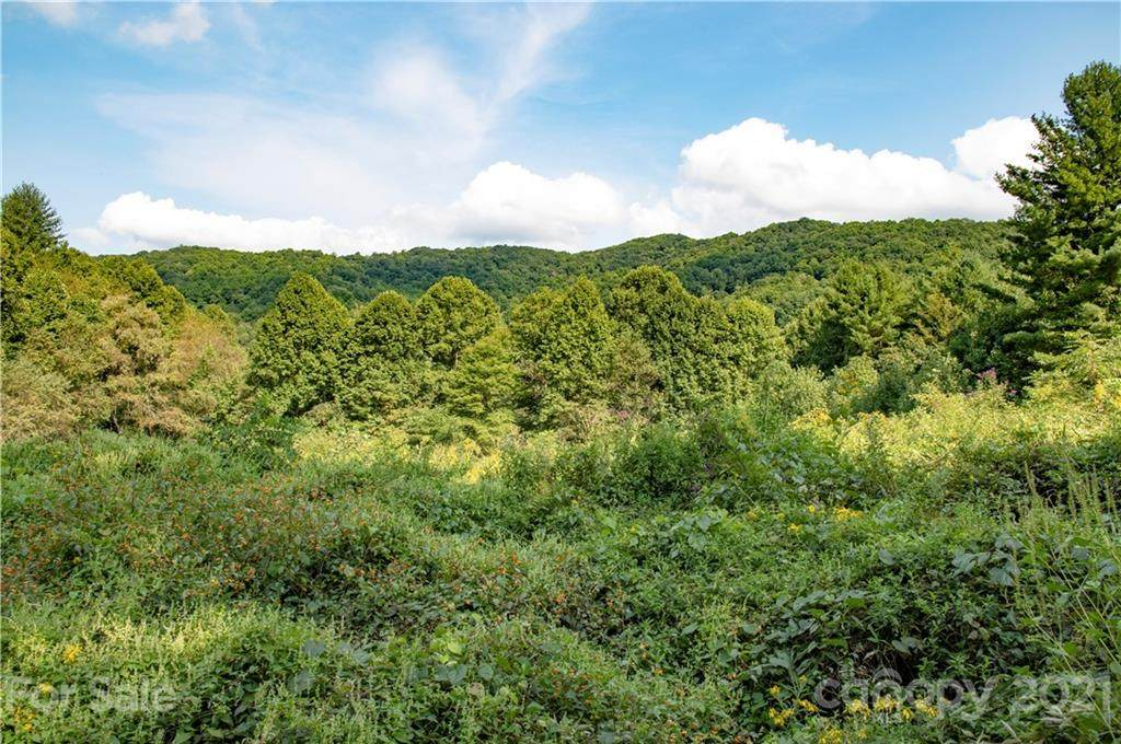 6200 Meadow Fork Road - Photo 1