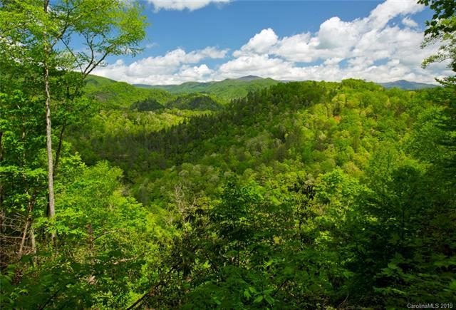 Lot 92 Bear River Lodge Trail #92, Marshall, NC 28753 (#3473593) :: Carlyle Properties