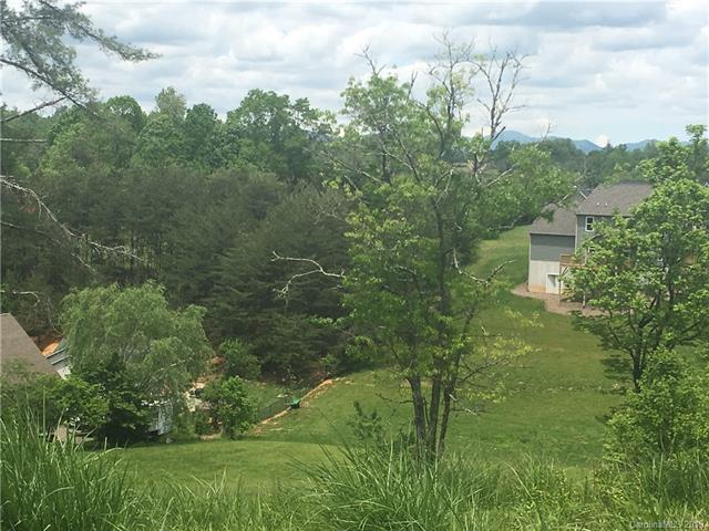 12 Old Amber Drive, Weaverville, NC 28787 (#3476621) :: LePage Johnson Realty Group, LLC