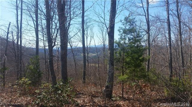 22 Windcliff Drive #77, Asheville, NC 28803 (#3500175) :: LePage Johnson Realty Group, LLC