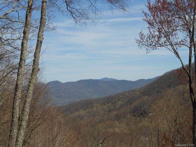 1581 Winding Creek Drive, Waynesville, NC 28786 (#3501179) :: Keller Williams Professionals