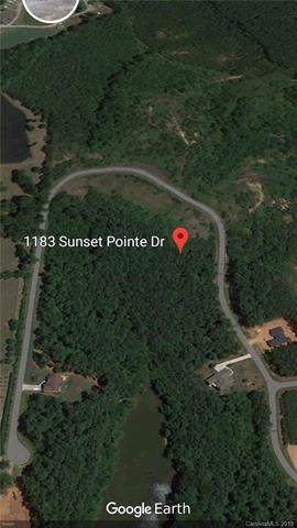 1183 Sunset Pointe Drive, Salisbury, NC 28146 (#3506883) :: Caulder Realty and Land Co.