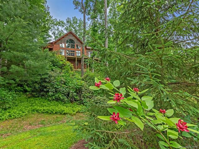 363 Kelly Mountain Road, Brevard, NC 28712 (#3516597) :: Charlotte Home Experts