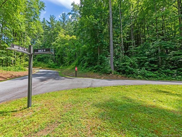Lot 38 Abby Falls Drive, Rosman, NC 28772 (#3519196) :: Roby Realty