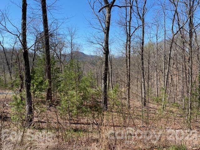 Lot 302 Mountain Brook Trail - Photo 1