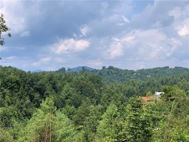 Lot 901 Low Country Way #901, Lenoir, NC 28645 (#3532896) :: Besecker Homes Team