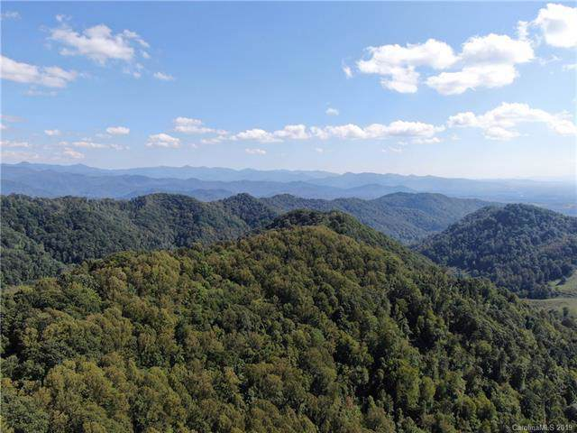 000 Granny Shepherd Road 5/Section 9, Mars Hill, NC 28754 (#3536832) :: Rinehart Realty
