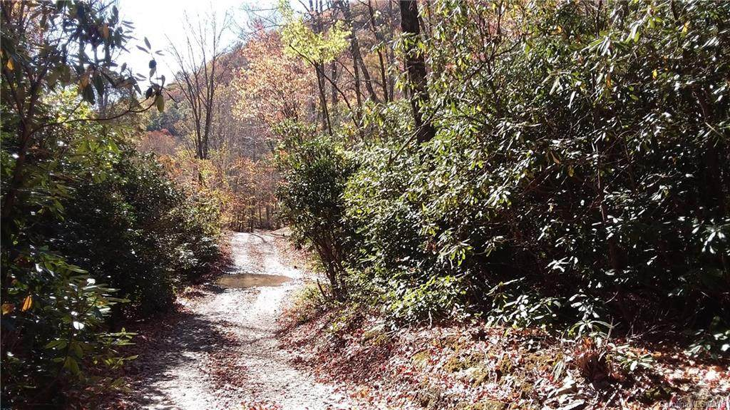 3.98 Acres+- Log Gap Road - Photo 1