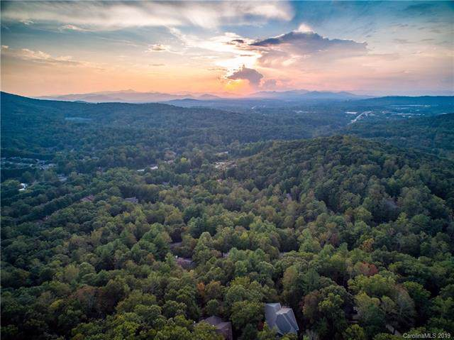 6 Skyview Court, Asheville, NC 28803 (#3551769) :: Homes Charlotte