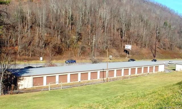 3009 Dellwood Road, Waynesville, NC 28786 (#3568170) :: LePage Johnson Realty Group, LLC