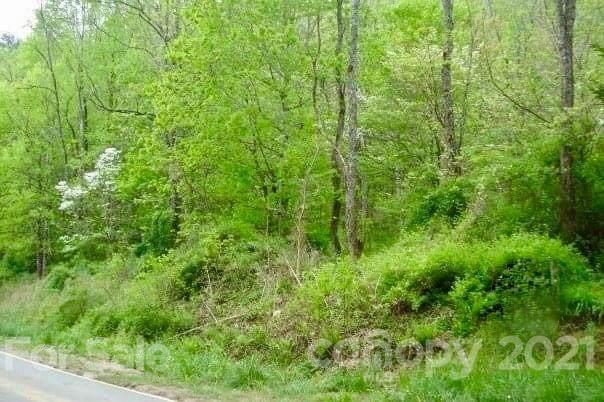 99999 Tanasee Gap Road - Photo 1