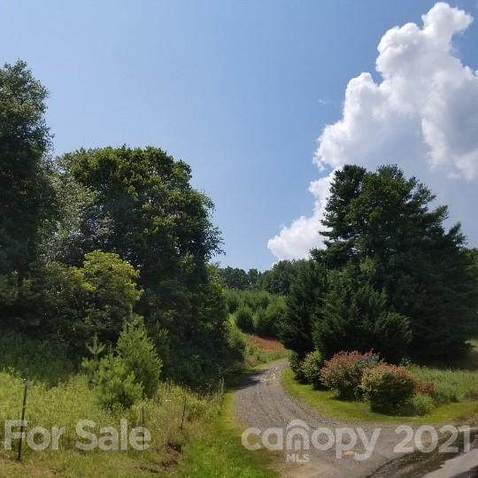 TBD-5 Hawk Ridge Road - Photo 1