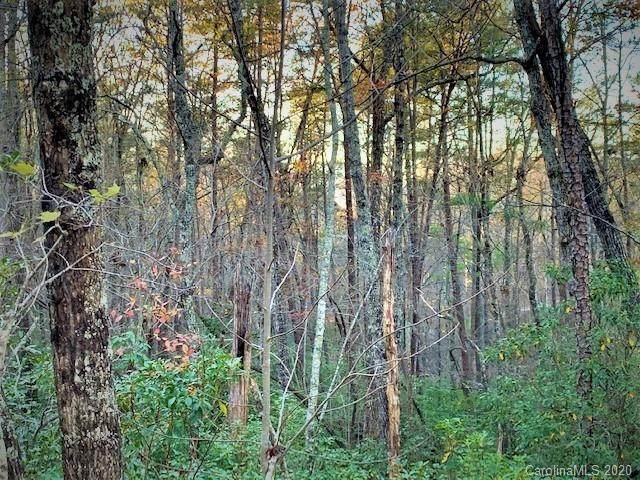 0 Poodles Way #291, Lake Lure, NC 28746 (#3687004) :: Robert Greene Real Estate, Inc.