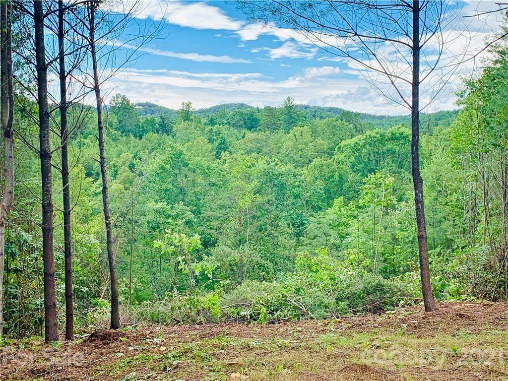 0 Blowing Pines Court - Photo 1