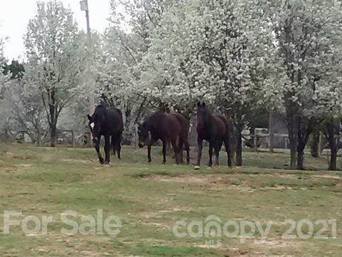 7934 Mcilwaine Road, Huntersville, NC 28078 (#3696649) :: Lake Norman Property Advisors