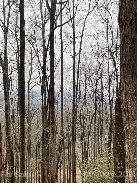 99999 Red Oak Drive #6, Mills River, NC 28759 (#3718564) :: Cloninger Properties