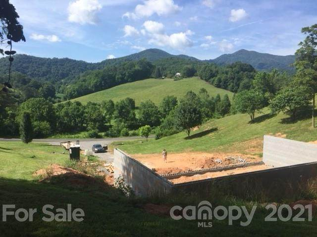 689 S Turkey Creek Road, Leicester, NC 28748 (#3765544) :: Mossy Oak Properties Land and Luxury