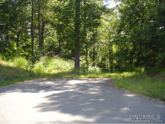 000 Scarlett Ridge Drive Lot 17, Marshall, NC 28753 (#NCM566471) :: Puffer Properties