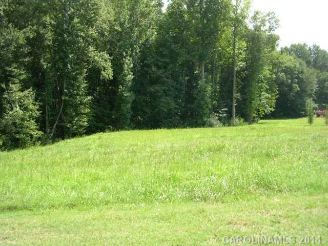 0 Doe Ridge Drive, Cleveland, NC 27013 (#2219038) :: Exit Realty Vistas