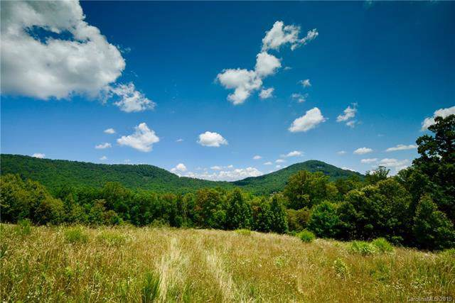 5 Smokey Ridge Trail - Photo 1